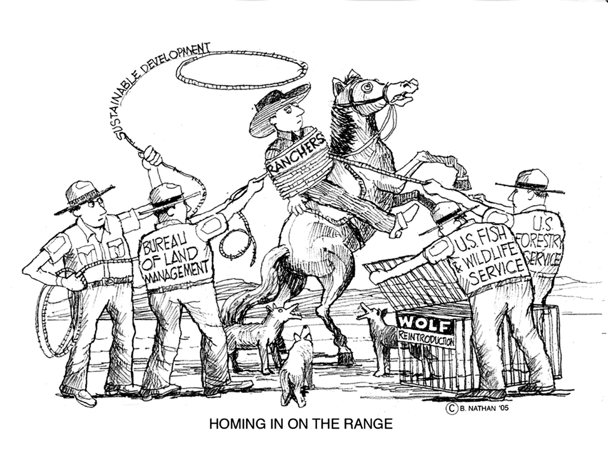 HOMING-IN-ON-THE-RANGE
